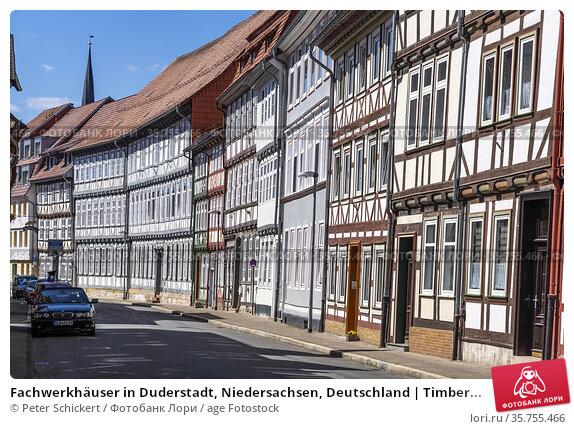 Fachwerkhäuser in Duderstadt, Niedersachsen, Deutschland   Timber... Стоковое фото, фотограф Peter Schickert / age Fotostock / Фотобанк Лори
