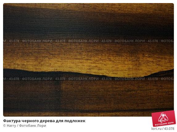 Фактура черного дерева для подложек, фото № 43078, снято 27 апреля 2007 г. (c) Harry / Фотобанк Лори