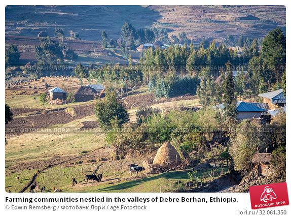 Farming communities nestled in the valleys of Debre Berhan, Ethiopia. Стоковое фото, фотограф Edwin Remsberg / age Fotostock / Фотобанк Лори