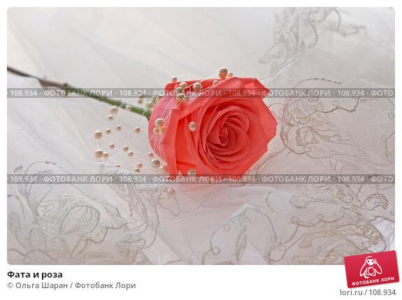 Фата и роза, фото № 108934, снято 7 августа 2007 г. (c) Ольга Шаран / Фотобанк Лори