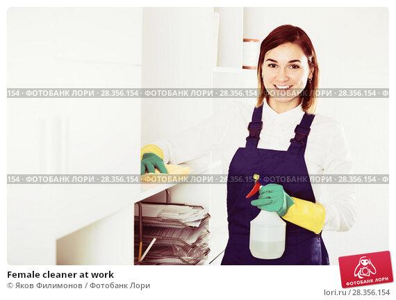 Купить «Female cleaner at work», фото № 28356154, снято 10 июля 2020 г. (c) Яков Филимонов / Фотобанк Лори