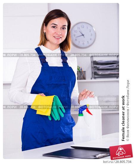 Купить «Female cleaner at work», фото № 28805734, снято 8 июля 2020 г. (c) Яков Филимонов / Фотобанк Лори
