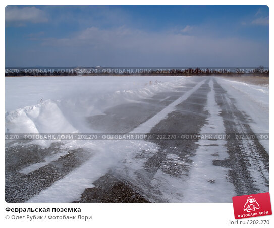 Февральская поземка, фото № 202270, снято 13 февраля 2008 г. (c) Олег Рубик / Фотобанк Лори