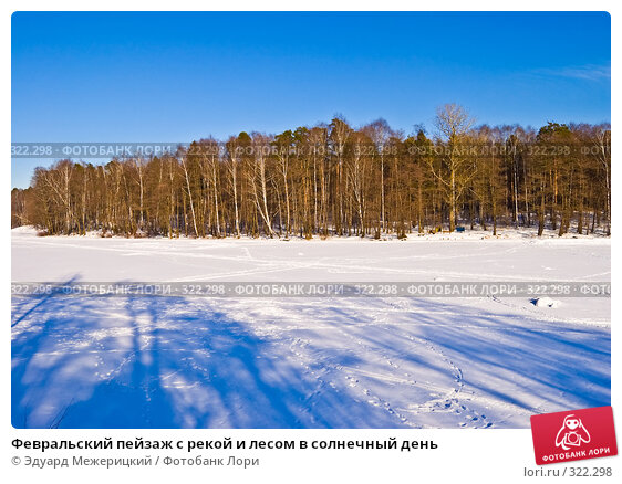 Февральский пейзаж с рекой и лесом в солнечный день, фото № 322298, снято 21 февраля 2008 г. (c) Эдуард Межерицкий / Фотобанк Лори
