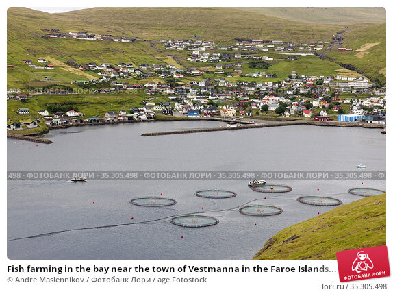 Fish farming in the bay near the town of Vestmanna in the Faroe Islands... Стоковое фото, фотограф Andre Maslennikov / age Fotostock / Фотобанк Лори