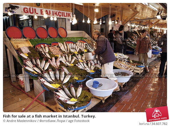 Fish for sale at a fish market in Istanbul. Turkey. (2005 год). Редакционное фото, фотограф Andre Maslennikov / age Fotostock / Фотобанк Лори