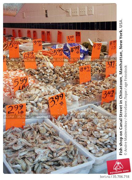 Fish shop on Canal Street in Chinatown, Manhattan, New York. USA. Стоковое фото, фотограф Andre Maslennikov / age Fotostock / Фотобанк Лори
