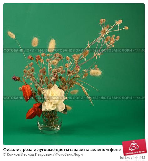 Физалис,роза и луговые цветы в вазе на зеленом фоне. Стоковое фото, фотограф Коннов Леонид Петрович / Фотобанк Лори