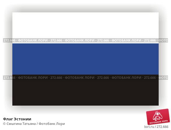Флаг Эстонии, фото № 272666, снято 23 июля 2017 г. (c) Смыгина Татьяна / Фотобанк Лори
