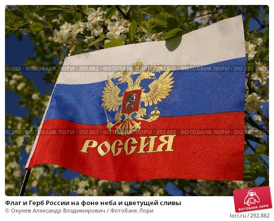 Флаг и Герб России на фоне неба и цветущей сливы, фото № 292882, снято 17 мая 2008 г. (c) Окунев Александр Владимирович / Фотобанк Лори