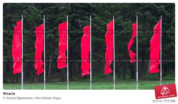 Флаги, фото № 311046, снято 18 мая 2008 г. (c) Олеся Ефименко / Фотобанк Лори