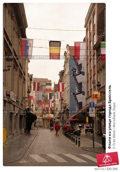 Флаги на улице города Брюссель, эксклюзивное фото № 320394, снято 24 октября 2016 г. (c) Free Wind / Фотобанк Лори