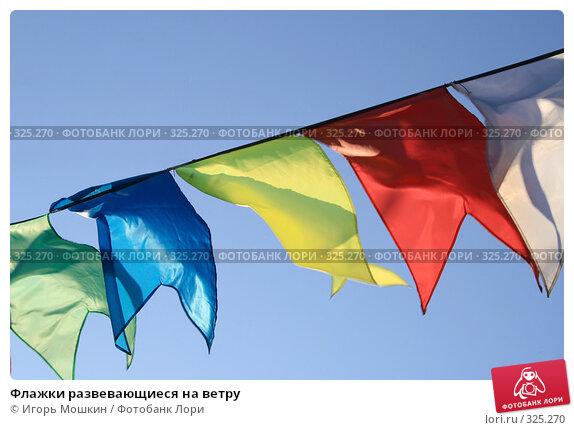 Флажки развевающиеся на ветру, фото № 325270, снято 13 июня 2008 г. (c) Игорь Мошкин / Фотобанк Лори
