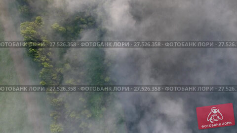 Купить «Flight from above over forest in fog at dawn», видеоролик № 27526358, снято 18 января 2018 г. (c) Михаил Коханчиков / Фотобанк Лори