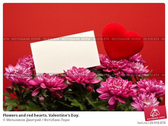 Купить «Flowers and red hearts. Valentine's Day.», фото № 29918874, снято 16 января 2017 г. (c) Мельников Дмитрий / Фотобанк Лори