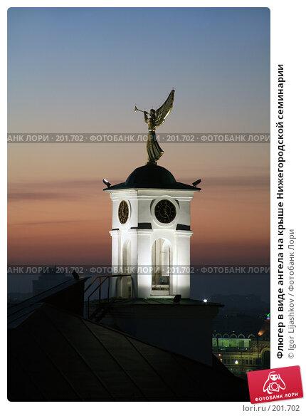 Флюгер в виде ангела на крыше Нижегородской семинарии, фото № 201702, снято 29 октября 2007 г. (c) Igor Lijashkov / Фотобанк Лори