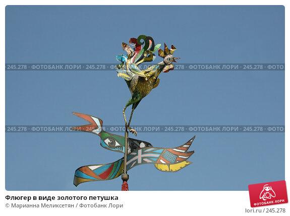 Купить «Флюгер в виде золотого петушка», фото № 245278, снято 12 июня 2007 г. (c) Марианна Меликсетян / Фотобанк Лори