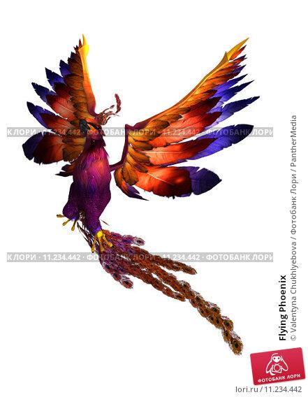 Купить «Flying Phoenix», фото № 11234442, снято 7 декабря 2018 г. (c) PantherMedia / Фотобанк Лори