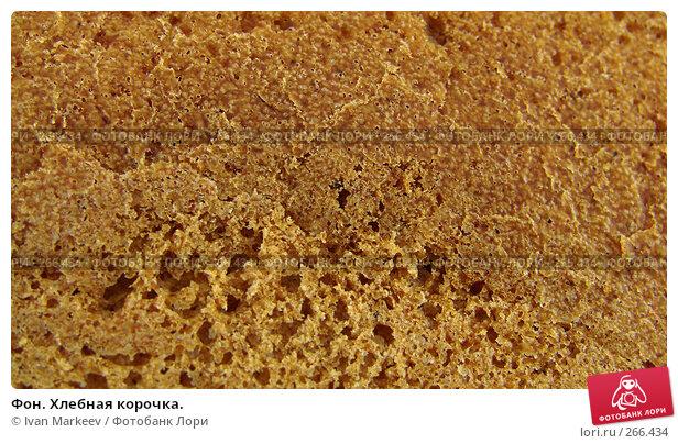Купить «Фон. Хлебная корочка.», фото № 266434, снято 23 марта 2018 г. (c) Ivan Markeev / Фотобанк Лори