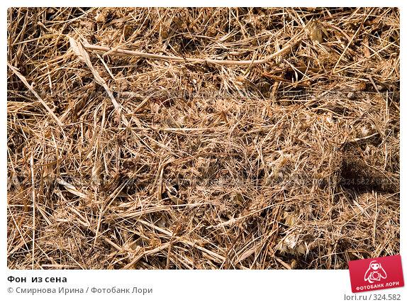 Фон  из сена, фото № 324582, снято 12 июня 2008 г. (c) Смирнова Ирина / Фотобанк Лори