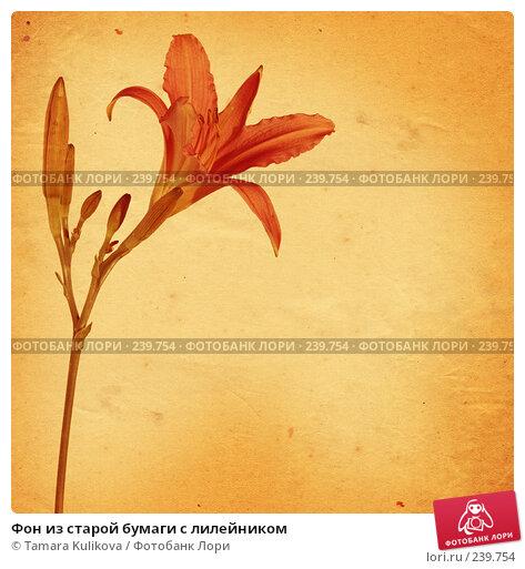 Фон из старой бумаги с лилейником, иллюстрация № 239754 (c) Tamara Kulikova / Фотобанк Лори