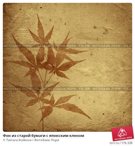 Фон из старой бумаги с японским кленом, иллюстрация № 176338 (c) Tamara Kulikova / Фотобанк Лори