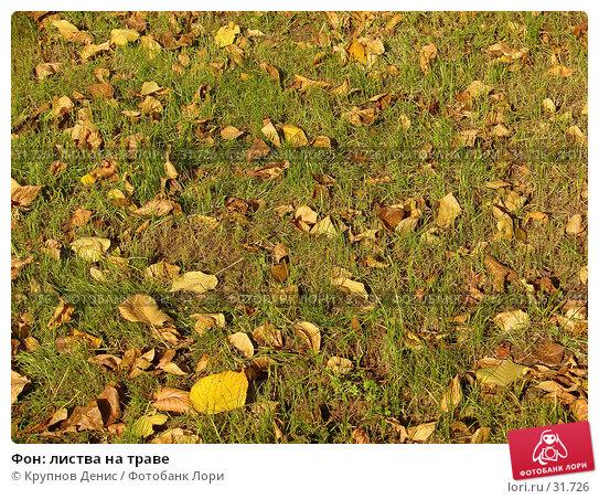 Фон: листва на траве, фото № 31726, снято 19 сентября 2006 г. (c) Крупнов Денис / Фотобанк Лори