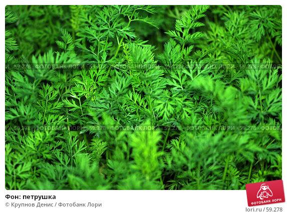 Фон: петрушка, фото № 59278, снято 30 мая 2007 г. (c) Крупнов Денис / Фотобанк Лори