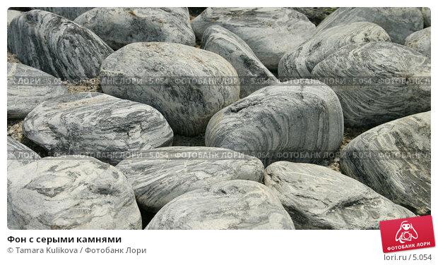 Фон с серыми камнями, фото № 5054, снято 1 июля 2006 г. (c) Tamara Kulikova / Фотобанк Лори