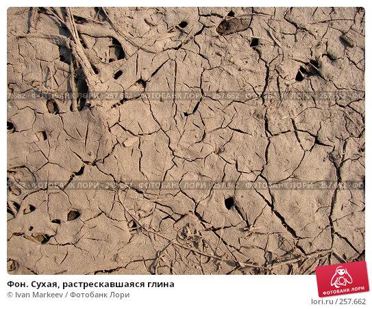 Купить «Фон. Сухая, растрескавшаяся глина», фото № 257662, снято 21 ноября 2017 г. (c) Ivan Markeev / Фотобанк Лори