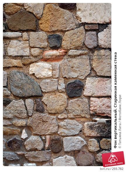 Фон вертикальный. Старинная каменная стена, эксклюзивное фото № 293782, снято 26 апреля 2008 г. (c) Татьяна Лата / Фотобанк Лори
