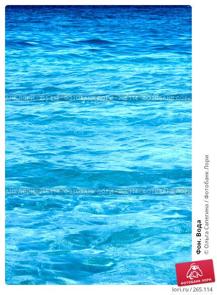 Фон. Вода, фото № 265114, снято 11 октября 2007 г. (c) Ольга Сапегина / Фотобанк Лори