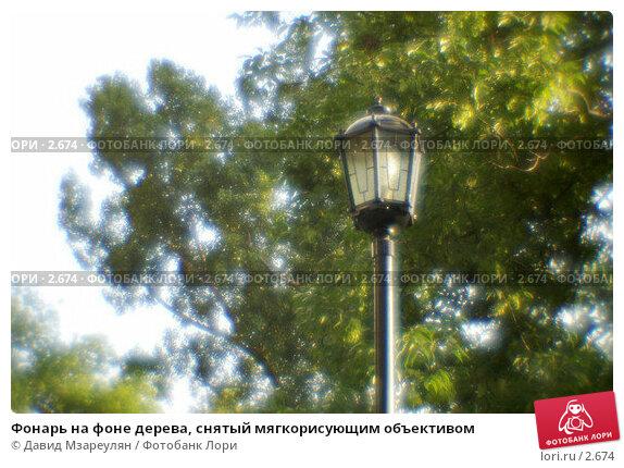 Фонарь на фоне дерева, снятый мягкорисующим объективом, фото № 2674, снято 2 июля 2004 г. (c) Давид Мзареулян / Фотобанк Лори