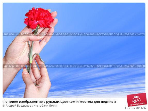 Фоновое изображение с руками,цветком и местом для подписи, фото № 206666, снято 29 марта 2017 г. (c) Андрей Бурдюков / Фотобанк Лори