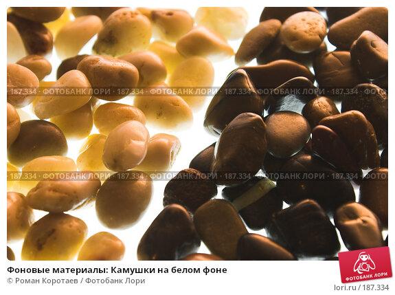 Фоновые материалы: Камушки на белом фоне, фото № 187334, снято 26 января 2008 г. (c) Роман Коротаев / Фотобанк Лори