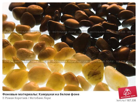 Фоновые материалы: Камушки на белом фоне, фото № 187338, снято 26 января 2008 г. (c) Роман Коротаев / Фотобанк Лори