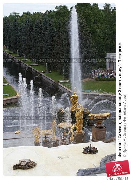 """Фонтан """"Самсон, разрывающий пасть льву"""". Петергоф, эксклюзивное фото № 56418, снято 25 июня 2006 г. (c) Ирина Мойсеева / Фотобанк Лори"""