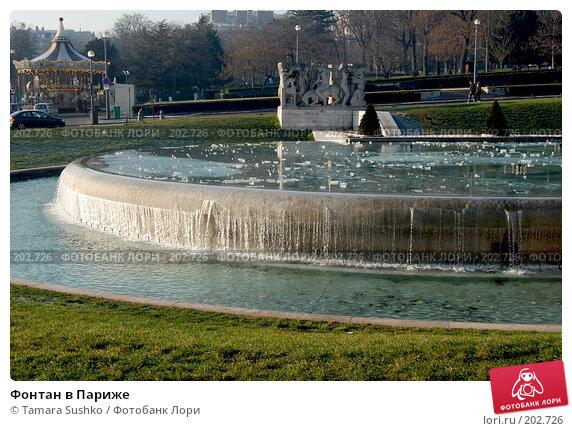 Купить «Фонтан в Париже», фото № 202726, снято 24 декабря 2007 г. (c) Tamara Sushko / Фотобанк Лори