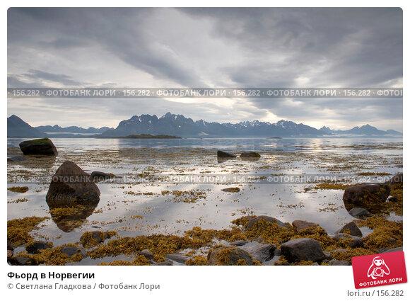 Фьорд в Норвегии, фото № 156282, снято 9 августа 2005 г. (c) Cветлана Гладкова / Фотобанк Лори