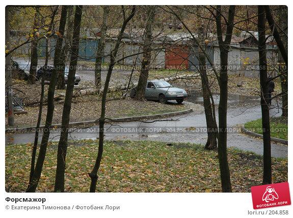 Форсмажор, фото № 204858, снято 28 октября 2006 г. (c) Екатерина Тимонова / Фотобанк Лори