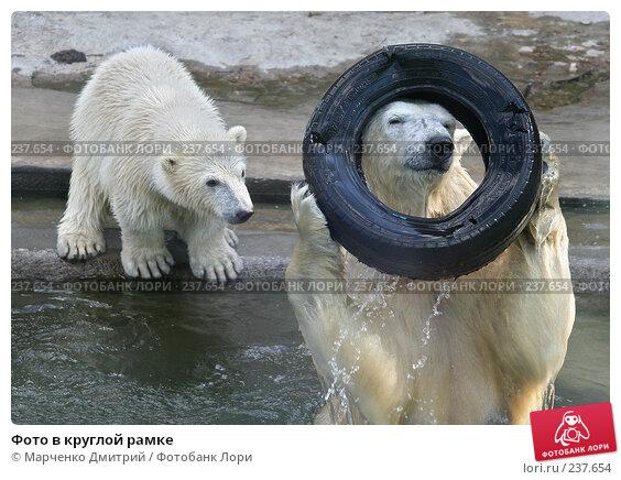 Купить «Фото в круглой рамке», фото № 237654, снято 7 мая 2006 г. (c) Марченко Дмитрий / Фотобанк Лори