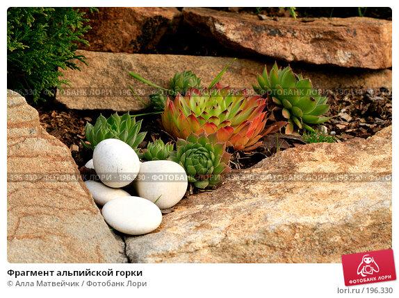 Фрагмент альпийской горки, фото № 196330, снято 8 сентября 2007 г. (c) Алла Матвейчик / Фотобанк Лори