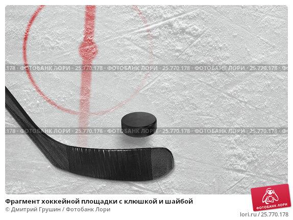 Купить «Фрагмент хоккейной площадки с клюшкой и шайбой», фото № 25770178, снято 6 февраля 2010 г. (c) Дмитрий Грушин / Фотобанк Лори