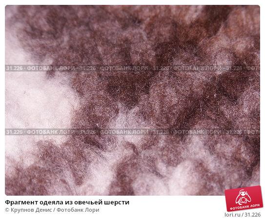 Фрагмент одеяла из овечьей шерсти, фото № 31226, снято 25 марта 2006 г. (c) Крупнов Денис / Фотобанк Лори