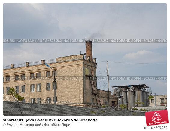 Фрагмент цеха Балашихинского хлебозавода, фото № 303282, снято 2 мая 2008 г. (c) Эдуард Межерицкий / Фотобанк Лори