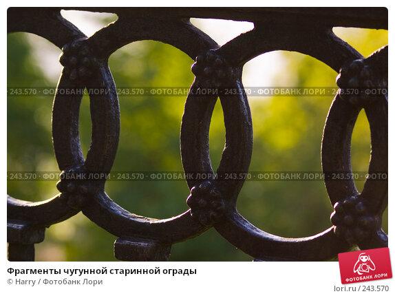 Фрагменты чугунной старинной ограды, фото № 243570, снято 2 июня 2007 г. (c) Harry / Фотобанк Лори