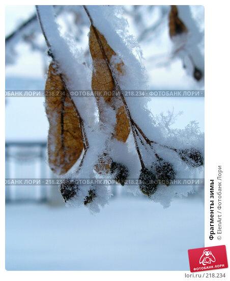 Фрагменты зимы, фото № 218234, снято 22 января 2017 г. (c) ElenArt / Фотобанк Лори
