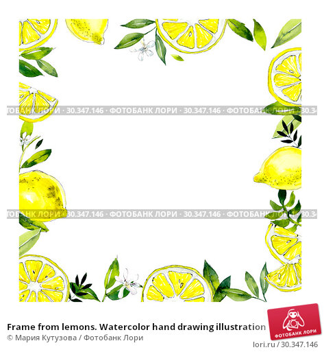 Купить «Frame from lemons. Watercolor hand drawing illustration», иллюстрация № 30347146 (c) Мария Кутузова / Фотобанк Лори