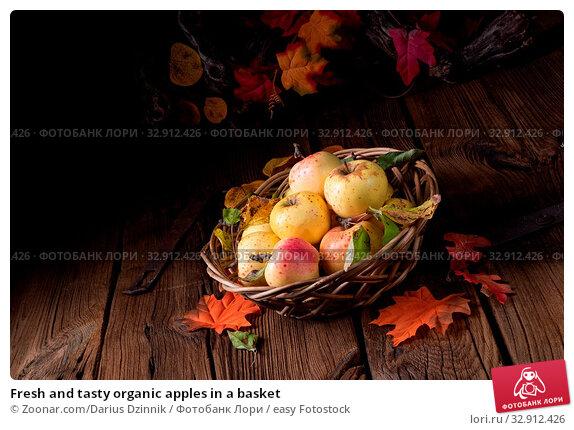 Fresh and tasty organic apples in a basket. Стоковое фото, фотограф Zoonar.com/Darius Dzinnik / easy Fotostock / Фотобанк Лори