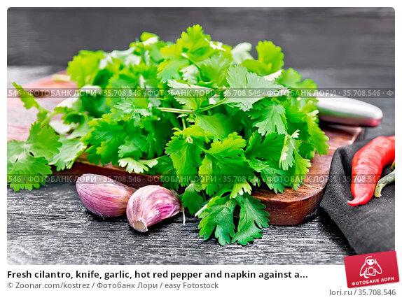 Fresh cilantro, knife, garlic, hot red pepper and napkin against a... Стоковое фото, фотограф Zoonar.com/kostrez / easy Fotostock / Фотобанк Лори